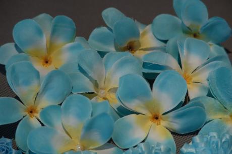 Květiny, dekorace,