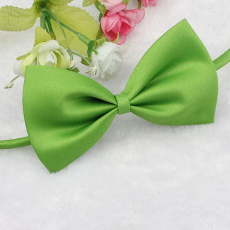 Zelený dětský motýlek,