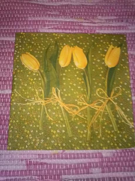 Obrazok tulipan,