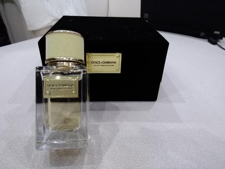 Parfem Dolce&Gabbana Velvet Mimosa Bloom,
