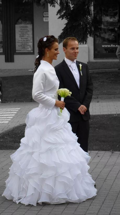 Svadobne šaty z lupenov, 38