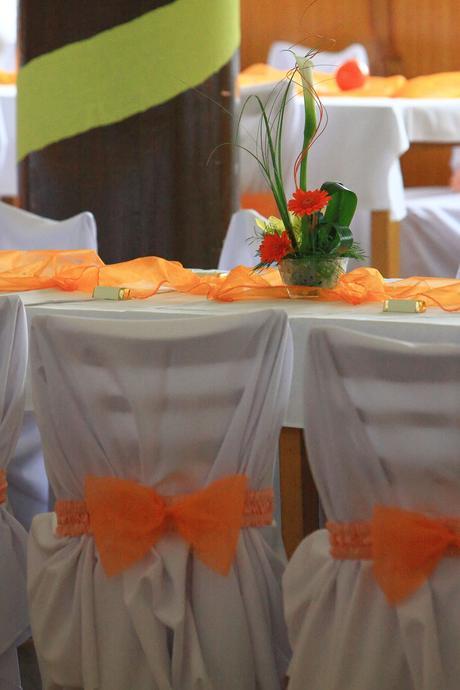 Oranžové mašličky,