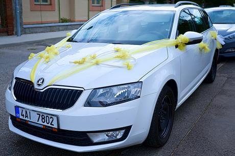 Komplet výzdoba na auta - nevěsta, ženich, hosté,