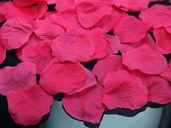 Plátky růží sytě růžové,
