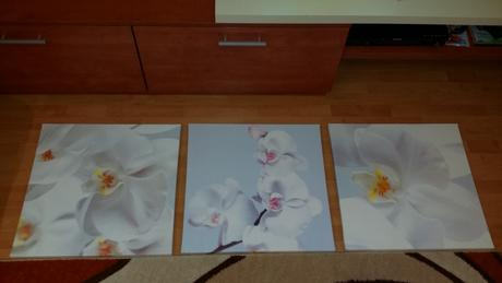 Obrazy orchidea 3 ks,