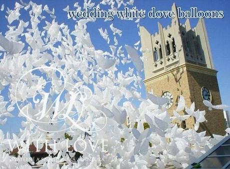 balónek-bílá holubice,
