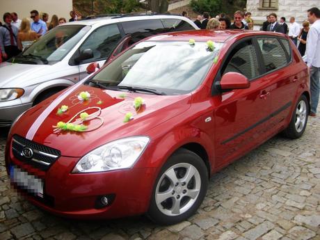Zelené růžičky na auto,