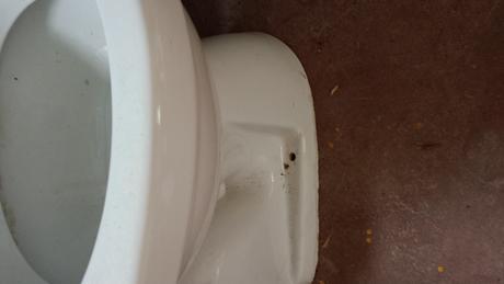 WC Misa,