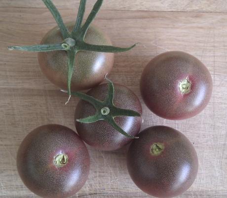 Paradajky Black Cherry - semená,