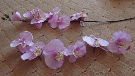 květy orchideje,