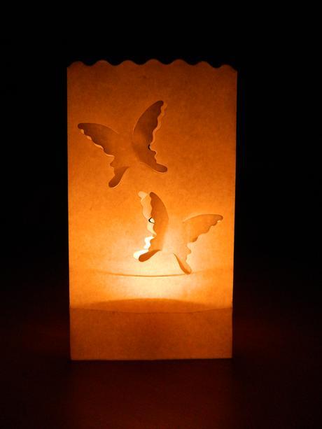 papírové lucerny s motýlky - 8 ks,