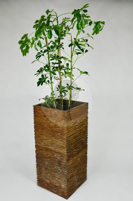 Drevený kvetináč veľký - ALNUS L,