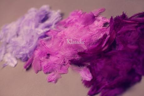 dekorativní peří - různé barvy,