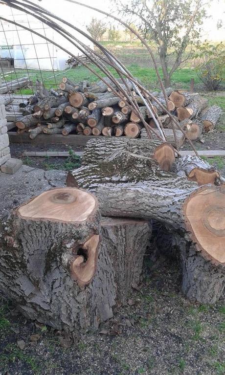 Drevo,