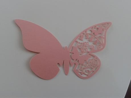 Motýlci k dekoraci,