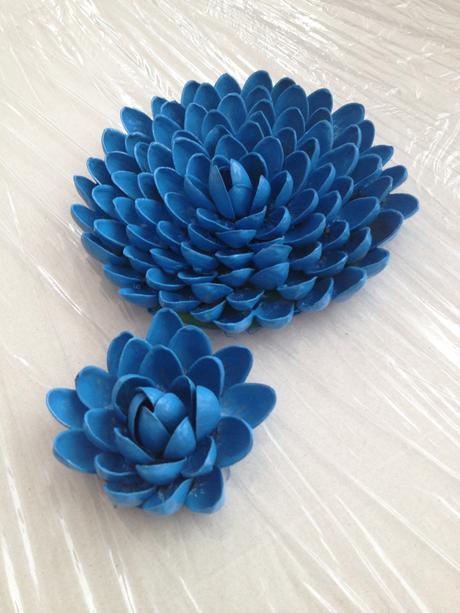 Netradiční květiny,