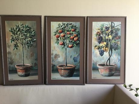 Obrazy stromov ,