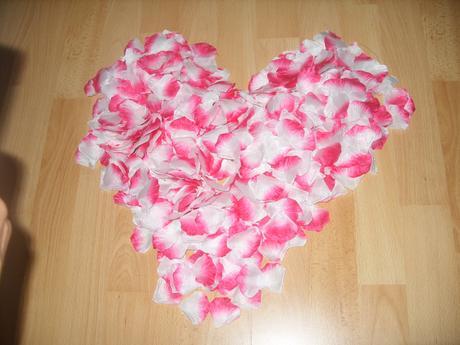 lupienky s ružovým okrajom 1000ks,