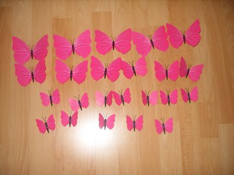 Motýle s magnetkou,