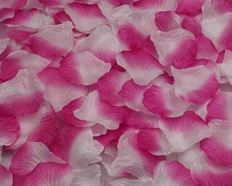 Plátky růží bílo-růžové,