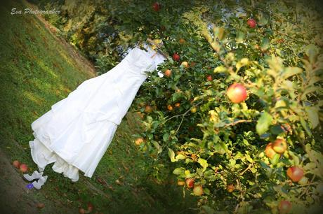 Smetanové šaty Pronovias, model Gemma, vel.34, 34