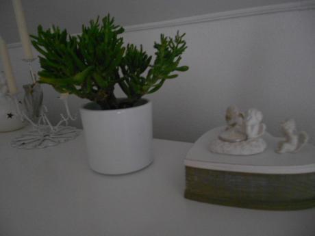 Nepoužité biele keramické kvetináče,