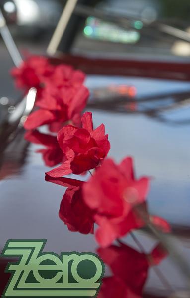 AKCE Svatební girlanda na auto - červená,
