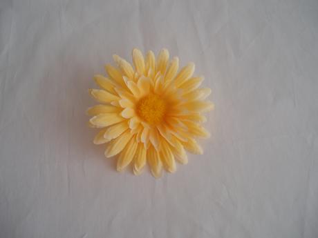 květ gerbery,