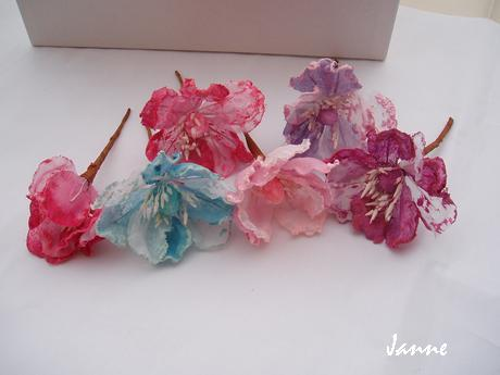 květ magnolie-lila,