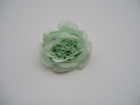 květ růže-mint,
