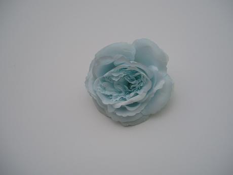květ růže-modrý,