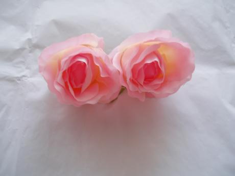 květ růže růžová velká,
