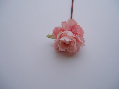 květ růže-růžový,