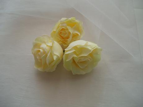 květ růže světle žluté,
