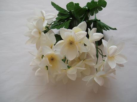 kytička bílých květů,