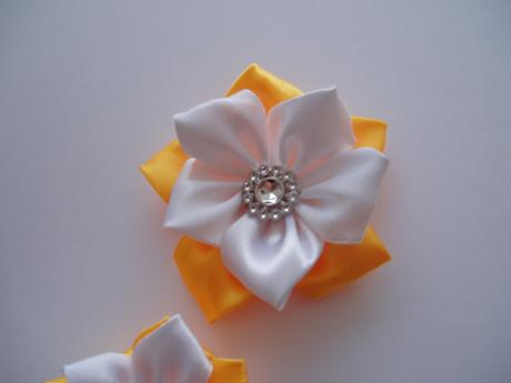 kytička žluto-bílá,