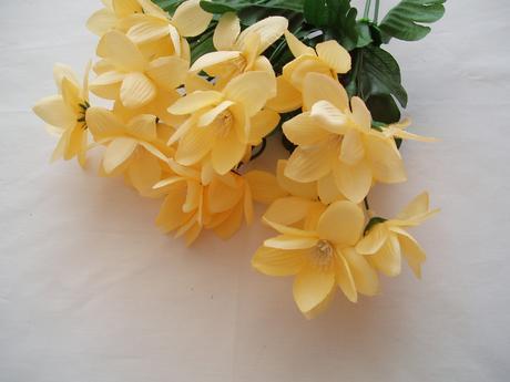 kytka žlutých kvítků,