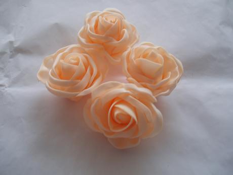 pěnová růže lososová,
