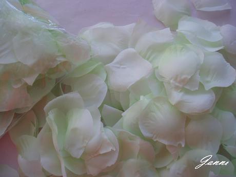 plátky růží-světle zelené,