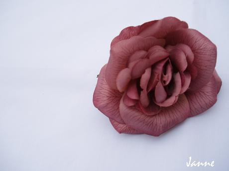 růže-hnědá,