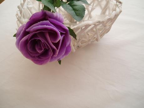 růže na stonku-fialová,