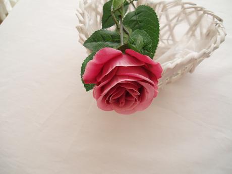 růže na stonku-starorůžová,