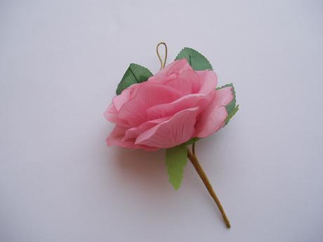 růže starorůžová,