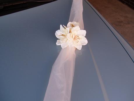 šerpa -rozkvetlá kapota 2,