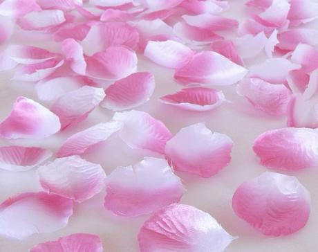 Lupene ruží bielo-ružové,