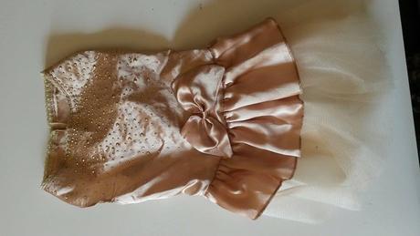 Zlaté šaty pro pejska,
