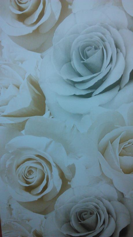 Tapeta - ruže,