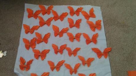 Motýlek ,