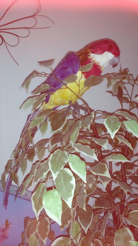 Dekoracia papagaj,