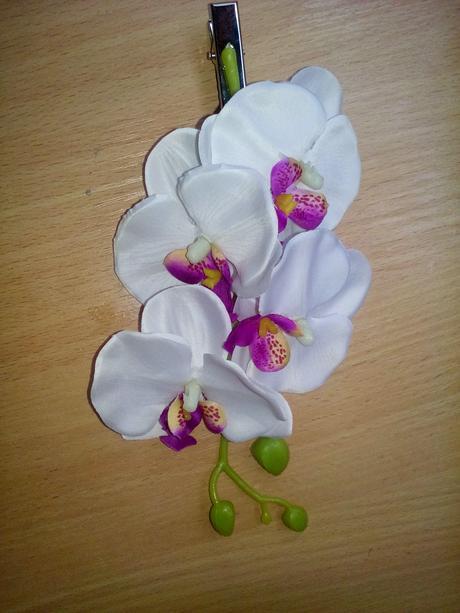 spona do vlasov orchidea,